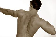 Allungando maschio indietro Fotografia Stock