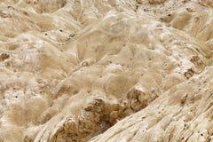 Alluni in Ladakh, India Fotografie Stock Libere da Diritti