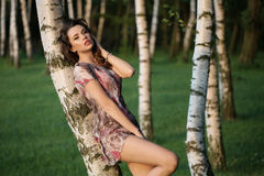 Alluring adult girl leaning on the birch Stock Photos