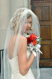 Alluring Bride Stock Photo