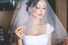 Alluring bride looks through the veil Stock Images