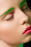 Alluring Model With Creative Make-up, Pink Lips Royalty Free Stock Image