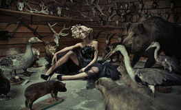 Alluring woman with wild animals Stock Images