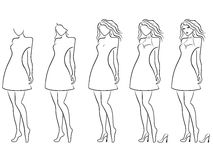 Alluring women contour in hand drawing sequence. Alluring young women vector contour in hand drawing sequence with five steps. Model of each stage can be used as Stock Photo