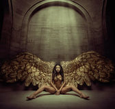 Alluring young angel in the dark hall. Alluring gold angel in the dark hall Royalty Free Stock Images