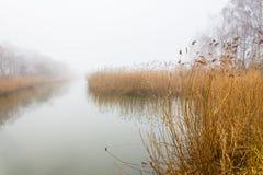 Alluviaal gebied in mist Royalty-vrije Stock Foto