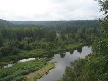 Alluviaal gebied onder de weelderige bossen van de rivier Stock Fotografie