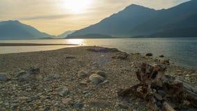 Alluvial, épave et jet à la mer, tronc, bois avec des trous passés sur la plage Gravedona, lac Como images libres de droits