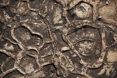 Free Alluvial Shale Pattern Stock Images - 22013584