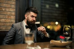 Allvarlig skäggig man som dricker öl i bar arkivbilder