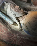 Allvarliga Alienor D'Aquitaine Arkivbild