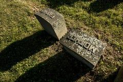 Allvarliga markörer för fader och för moder på en gammal kyrkogård royaltyfri fotografi