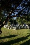 Allvarliga markörer på en gammal kyrkogård royaltyfria foton