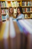 Allvarliga unga studenter som tillsammans arbetar Arkivbild