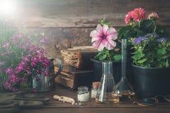 Almácigo de las plantas y flores de jardín, libros viejos y remedios homeopáticos para las plantas Fotos de archivo
