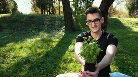 Alm?cigos jovenes de la albahaca crecidos en las hojas verdes de los potes, sanas e intensas Un hombre joven en vidrios sostiene  almacen de video