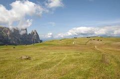 Alm di Seiser, Tirolo del sud, Italia Fotografia Stock