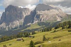 Alm di Seiser, Tirolo del sud, Italia Immagine Stock