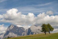 Alm di Seiser, Tirolo del sud, Italia Fotografie Stock