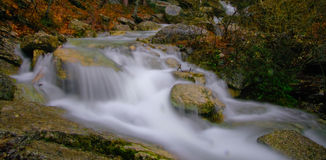 Сalm river. Pure river with stones and moss Royalty Free Stock Photography