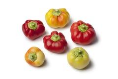 Alma paprika peppers Stock Photo