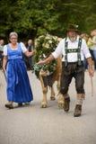 Almabtrieb e Viehscheid in Baviera Fotografie Stock