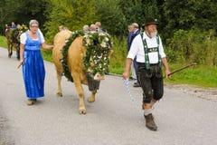 Almabtrieb en Viehscheid in Beieren Stock Afbeelding