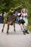 Almabtrieb en Viehscheid in Beieren Royalty-vrije Stock Fotografie