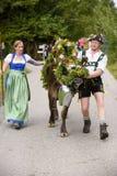 Almabtrieb en Viehscheid in Beieren Stock Afbeeldingen