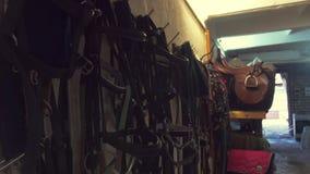 Almacén con las sillas de montar y el equipo ecuestre metrajes