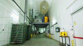 Almacén grande del congelador en la planta trasteros grandes en el almacén para almacenar manzanas u otros productos en seguro metrajes