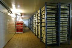 Almacenaje del queso en lechería Foto de archivo