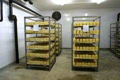 Almacenaje del queso en lechería Imágenes de archivo libres de regalías