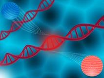 Almacenamiento de datos de Digitaces en la DNA Fotos de archivo libres de regalías