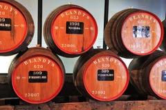 Almacenamiento del vino costoso Madeira del vintage Imagenes de archivo