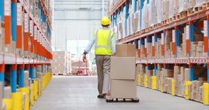 Almacene al trabajador que tira del camión de plataforma con las cajas de cartón almacen de video