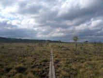 Almacene el parque nacional de Mosse Fotos de archivo libres de regalías
