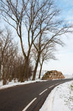 Almacene los árboles aserrados a lo largo de la cara del camino en invierno Imagen de archivo libre de regalías