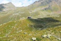 Almandine alpino Immagini Stock