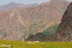 Almaty gór krajobraz na letnim dniu Obraz Royalty Free