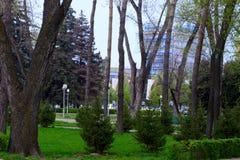 Almaty miasta parki w wiośnie Obraz Royalty Free