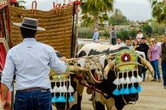 ALMAYATE,西班牙- 2018 4月21日,传统安达卢西亚的比赛 免版税图库摄影