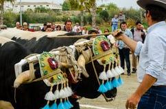 ALMAYATE,西班牙- 2018 4月21日,传统安达卢西亚的比赛 免版税库存图片