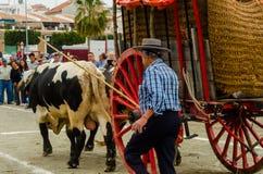 ALMAYATE,西班牙- 2018 4月21日,传统安达卢西亚的比赛 库存图片