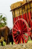 ALMAYATE,西班牙- 2018 4月21日,传统安达卢西亚的比赛 图库摄影