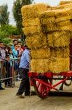 ALMAYATE,西班牙- 2018 4月21日,传统安达卢西亚的比赛 免版税库存照片