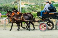 ALMAYATE,西班牙- 2018 4月22日,传统安达卢西亚的比赛 免版税库存图片