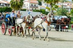 ALMAYATE,西班牙- 2018 4月22日,传统安达卢西亚的比赛 库存照片