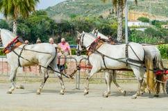 ALMAYATE HISZPANIA, KWIECIEŃ, - 22, 2018 Tradycyjny Andaluzyjski konkurs Fotografia Stock