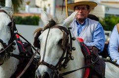 ALMAYATE HISZPANIA, KWIECIEŃ, - 22, 2018 Tradycyjny Andaluzyjski konkurs Obraz Royalty Free